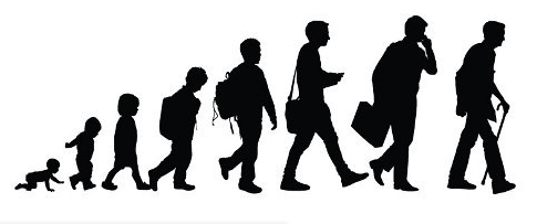 Caminho Evolução