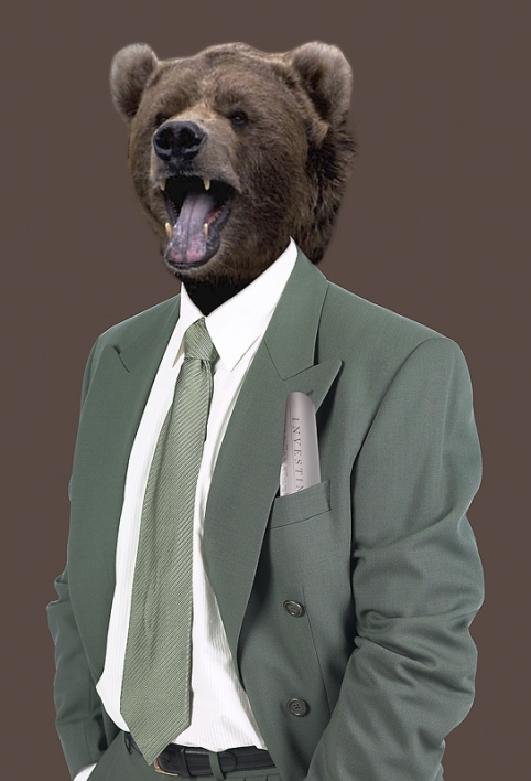 bear-in-suit