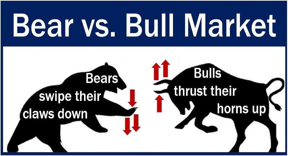 Bull-market-and-bear-market-image