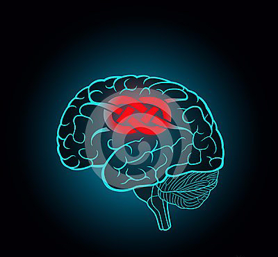 brain-convolutions-associated-to-knot-concept-unsolvable-problems-challenges-92783990