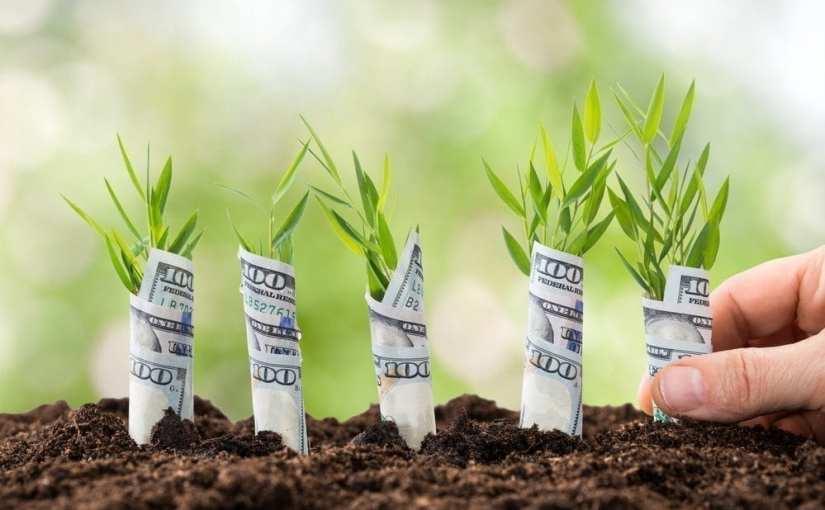 Tenho Dinheiro! Quero Investir – Road Map#5